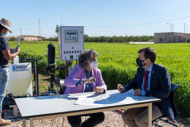 Investigan la capacidad de la cebada como filtro verde para el Mar Menor - 1, Foto 1