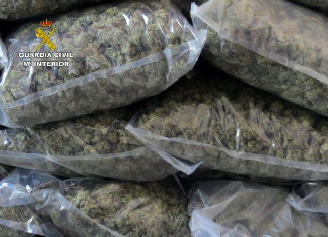La Guardia Civil desmantela en Pliego una instalación dedicada al cultivo intensivo de marihuana - 2, Foto 2