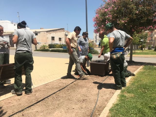 El Ayuntamiento mejora la jardinería del Parque de San José con la colocación de 19 maceteros con nuevas plantas, la mejora del sistema de riego y la poda de arbustos - 1, Foto 1