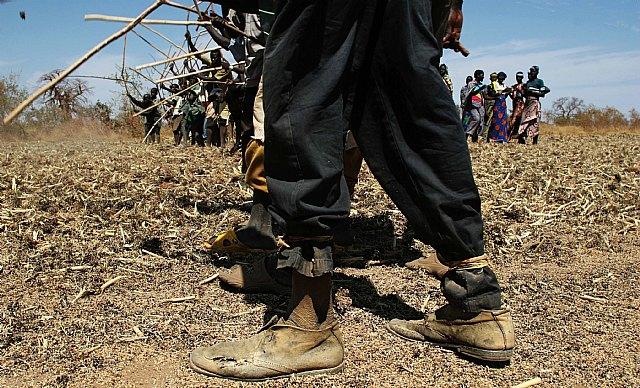 La pandemia de la COVID-19 hace estallar el hambre en el mundo - 1, Foto 1
