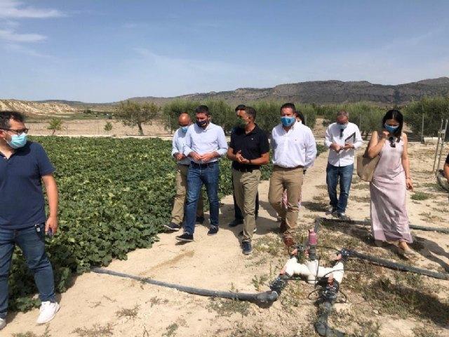 Una finca experimental en Yéchar reduce el uso de fertilizantes en la agricultura a través de microorganismos - 1, Foto 1