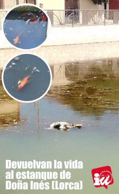 IU-Verdes alerta de un episodio de anoxia en el estanque de Doña Inés que está acabando con su fauna - 2, Foto 2