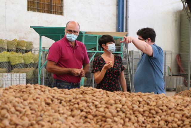 La campaña de la almendra está finalizando en Vega de Pliego con muy buena calidad del producto - 2, Foto 2