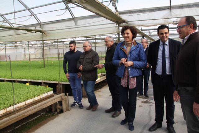La alcaldesa y el director general del SEF visitan la empresa agrícola PlantiAgro que genera un centenar de empleos al año - 2, Foto 2