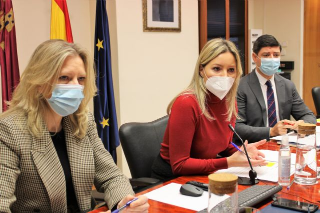 Martínez Vidal se reúne con el sector del comercio para estudiar nuevas líneas de ayudas, Foto 1