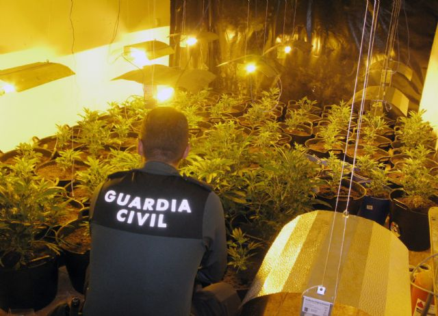 The Civil Guard dismantles a marijuana plantation in a house in Totana illegally occupied by a young couple