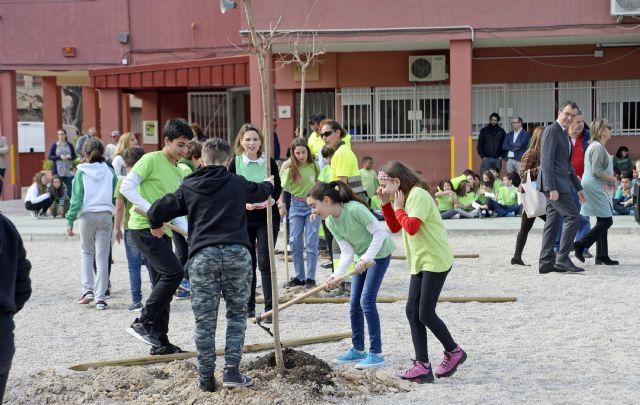 Más de 20.000 escolares de Murcia y sus pedanías disfrutarán de nuevos espacios de sombra gracias al Plan Foresta - 2, Foto 2