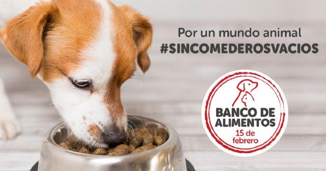 La Fundación Kiwoko celebra su amor por las mascotas con una nueva edición del Banco de Alimentos - 1, Foto 1