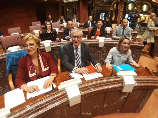 Maruja Pelegrín: Los presupuestos mantienen la apuesta firme del PP por la política social con un millón de euros al día para atender a los más vulnerables - 1, Foto 1