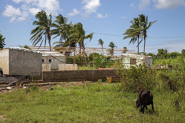 Un año después del ciclón Idai, 2,5 millones de personas en Mozambique siguen necesitando ayuda humanitaria - 1, Foto 1