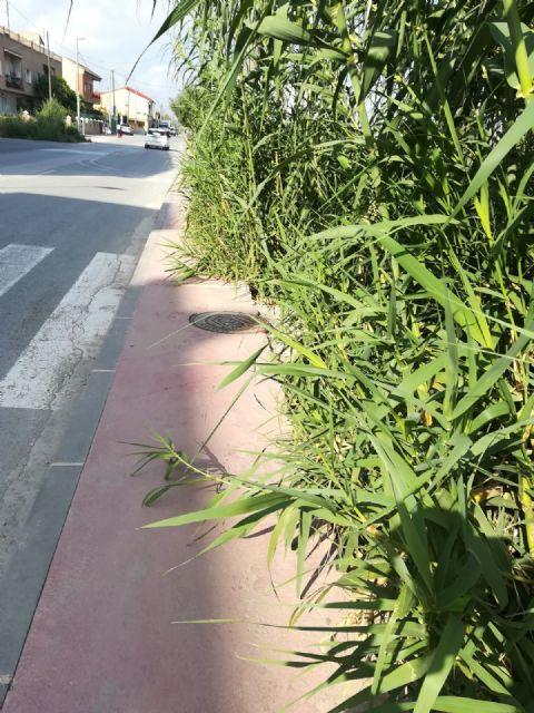 Ahora Murcia pide limpieza, seguridad y movilidad dignas en la calle Taller de Patiño - 4, Foto 4