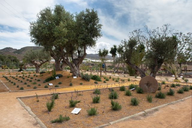El jardín etnobotánico crea un nuevo espacio de educación medioambiental en el municipio, Foto 3