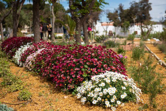 El jardín etnobotánico crea un nuevo espacio de educación medioambiental en el municipio, Foto 4