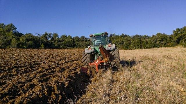 Cómo puedo ofrecerme para trabajar en el sector agrario? - 1, Foto 1