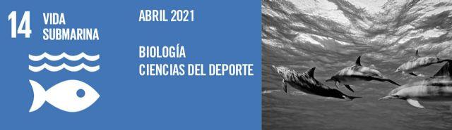 ODSesiones de la UMU concienciará durante el mes de abril sobre la importancia de la protección y conservación de los océanos - 1, Foto 1