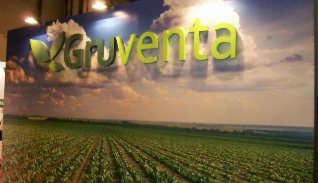 """Muy """"buenas expectativas"""" en la campaña de melón para GRUVENTA - 1, Foto 1"""