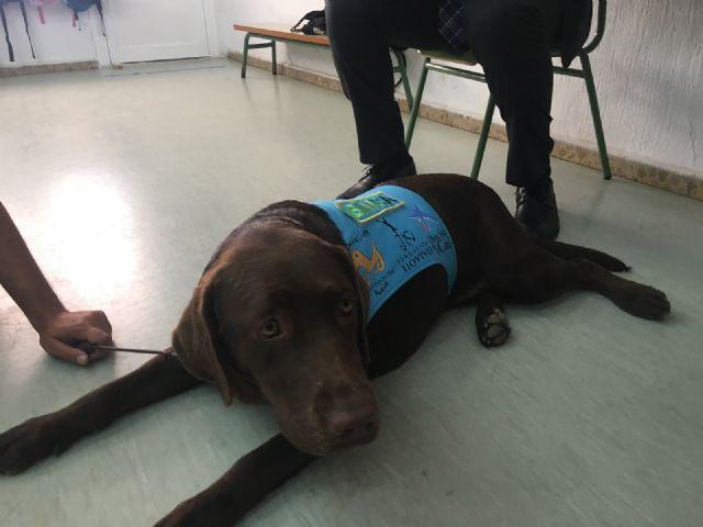 El aula abierta del CEIP Joaquín Carrión y Aidemar participan con éxito en un proyecto de terapia con perros - 4, Foto 4