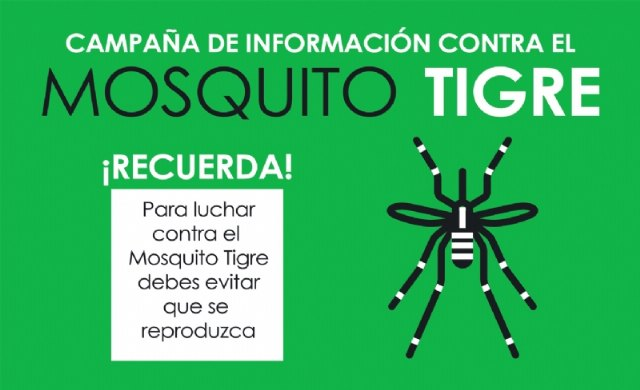 Vuelve el calor, vuelve el mosquito tigre. Consulta aquí las recomendaciones, Foto 1