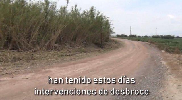 [Compromiso con nuestros caminos: se realizan desbroces a lo largo del municipio