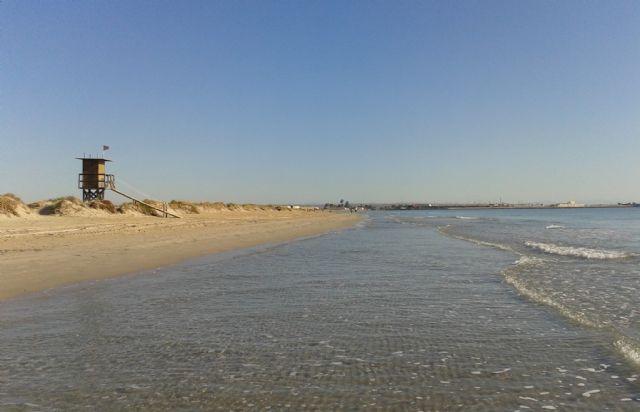 El programa europeo Life financia el proyecto de conservación de hábitats y aves en Las Salinas y arenales de San Pedro - 1, Foto 1