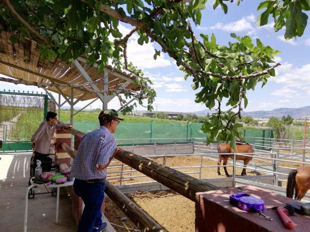 Los usuarios del centro de día de personas mayores visitan la Fundación Cavalli, Foto 1