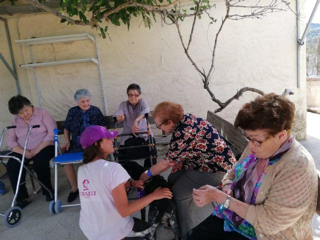 Los usuarios del centro de día de personas mayores visitan la Fundación Cavalli, Foto 4