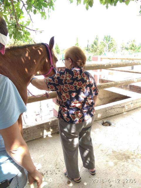 Los usuarios del centro de día de personas mayores visitan la Fundación Cavalli, Foto 7