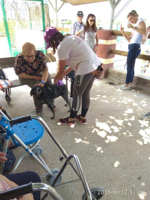 Los usuarios del centro de día de personas mayores visitan la Fundación Cavalli, Foto 9