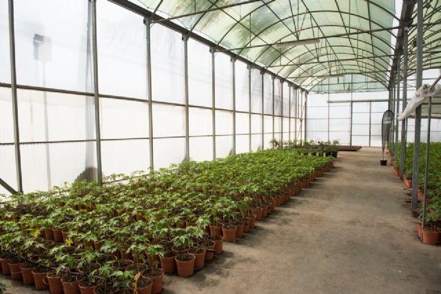 Charla técnica sobre fertilización de cultivos protegidos, Foto 1