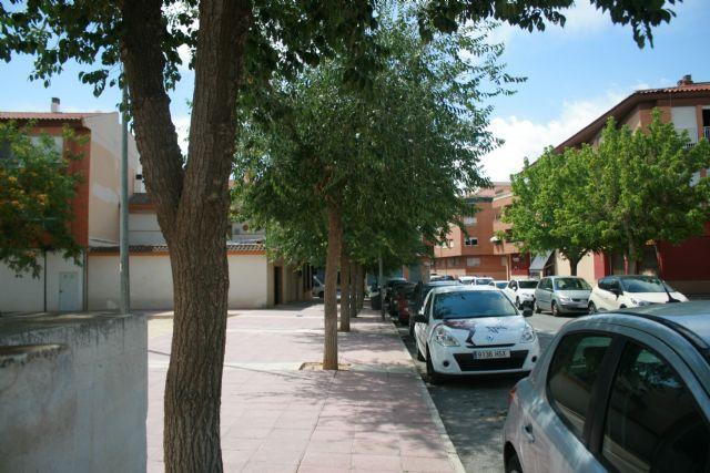Repondrán varias alineaciones de árboles viarios por su afección interna que había generado debilidades estructurales en tronco y ramas, Foto 2
