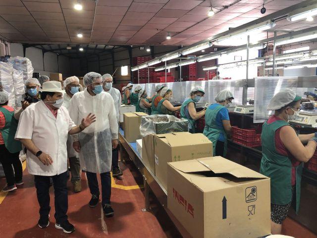 La campaña de uva de mesa alcanzará las 140.000 toneladas de producción y superará las cifras de exportación del pasado año - 1, Foto 1