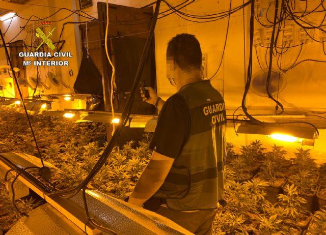 La Guardia Civil desmantela en Abarán una plantación indoor y detiene a sus dos responsables - 2, Foto 2