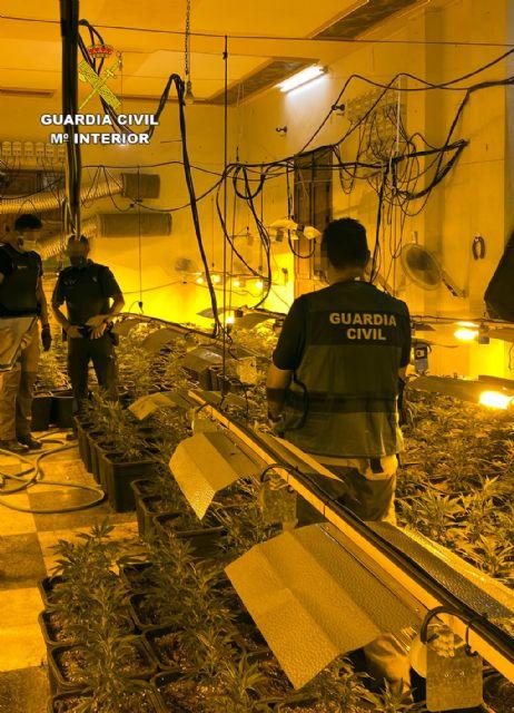 La Guardia Civil desmantela en Abarán una plantación indoor y detiene a sus dos responsables - 3, Foto 3