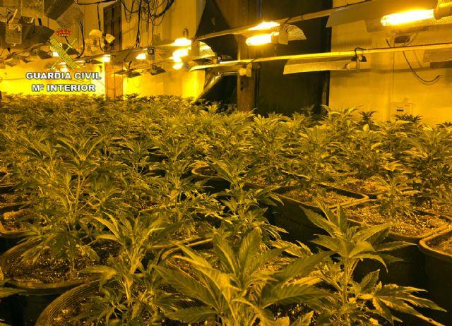 La Guardia Civil desmantela en Abarán una plantación indoor y detiene a sus dos responsables - 4, Foto 4