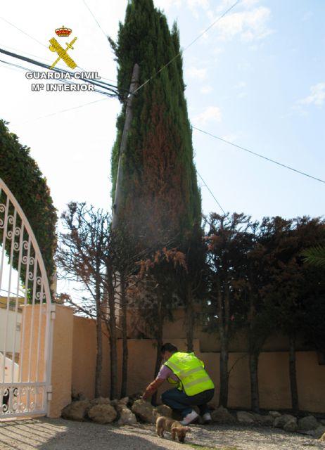 La Guardia Civil detiene a un pirómano dedicado a prender fuego a vehículos y viviendas de Águilas - 1, Foto 1