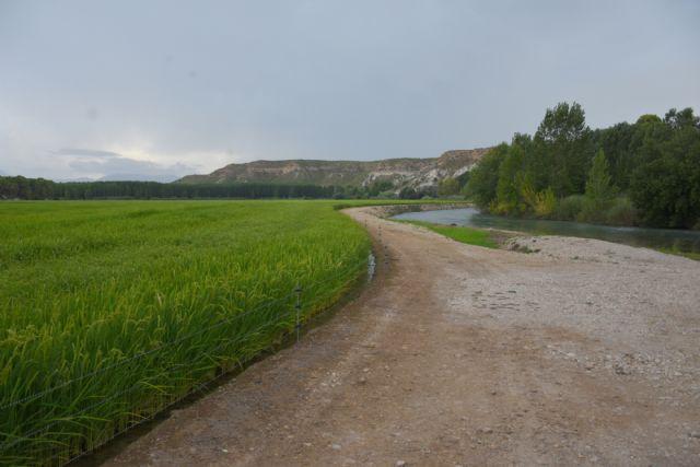 Vuelven las rutas y los paseos turísticos por la vega arrocera de Calasparra, para recibir el otoño - 1, Foto 1