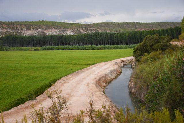 Vuelven las rutas y los paseos turísticos por la vega arrocera de Calasparra, para recibir el otoño - 2, Foto 2