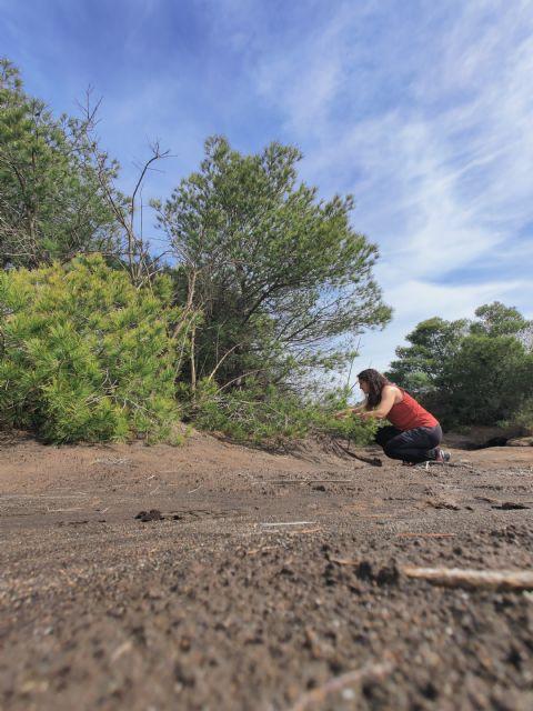 Identifican bacterias y hongos que facilitan la revegetación de antiguas zonas mineras e industriales - 2, Foto 2