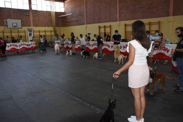 XIV Concurso Nacional Canino de Calasparra - 1, Foto 1