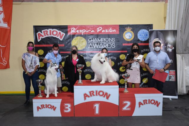 XIV Concurso Nacional Canino de Calasparra - 2, Foto 2