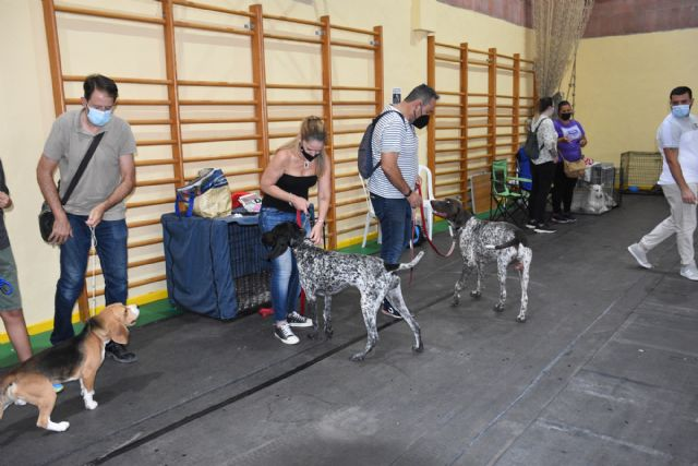 XIV Concurso Nacional Canino de Calasparra - 3, Foto 3