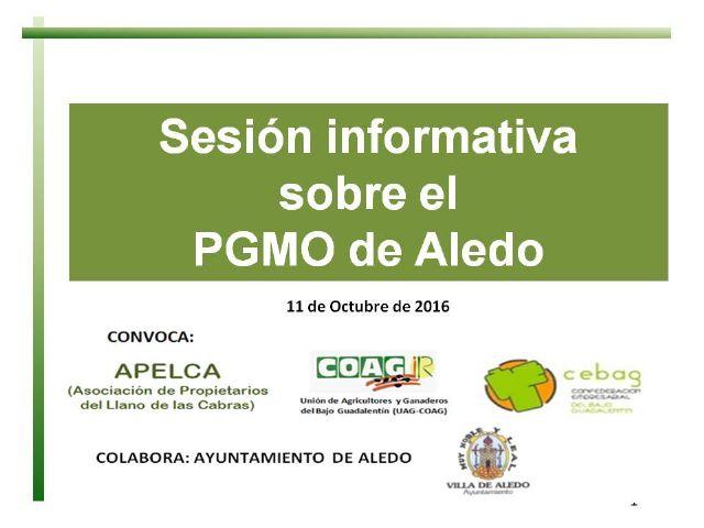 Intenso y amplio debate sobre la revisión del PGMO de Aledo - 1, Foto 1