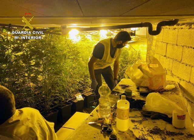 La Guardia Civil desmantela un invernadero subterráneo de con cerca de un millar de plantas de marihuana - 1, Foto 1