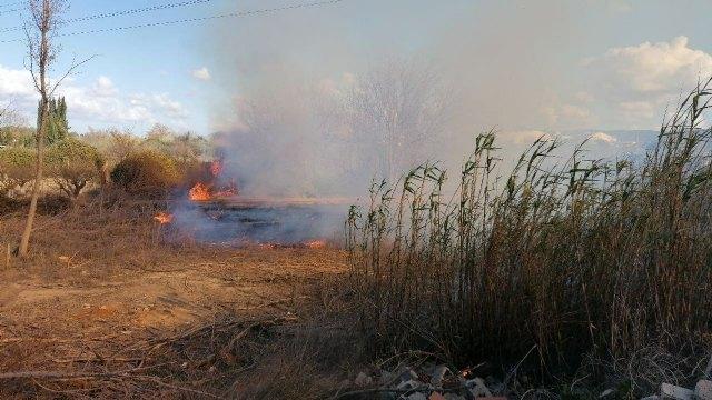 Incendio de vegetación en los márgenes del río Segura, en Puebla de Soto - 2, Foto 2