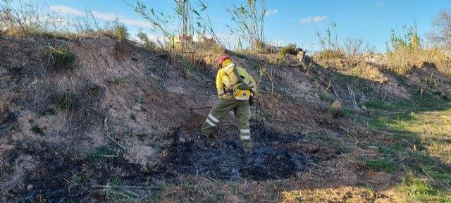 Incendio de vegetación en los márgenes del río Segura, en Puebla de Soto - 3, Foto 3