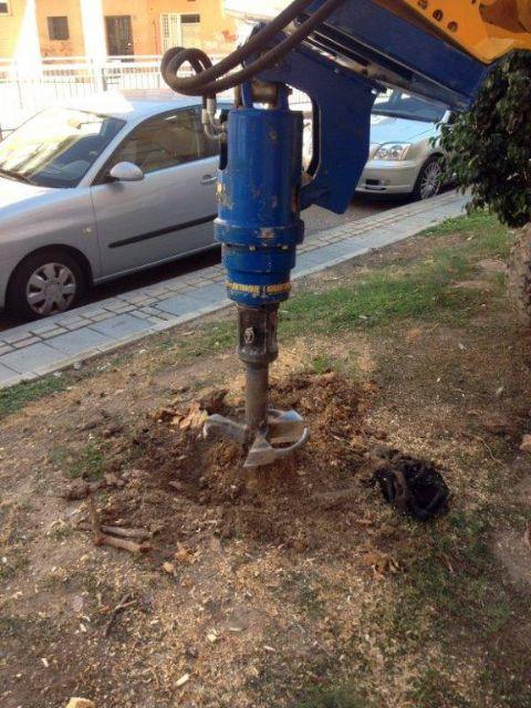 Parques y Jardines realiza el destoconado de viejos troncos para recuperar diversos árboles en el municipio - 2, Foto 2