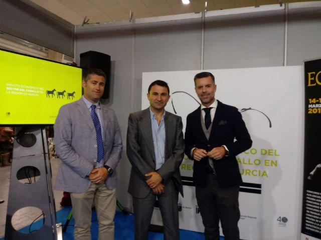 El Salón Internacional de Caballos de Razas Puras Región de Murcia-Equimur 2019 celebra su vigésimo cuarta edición - 3, Foto 3