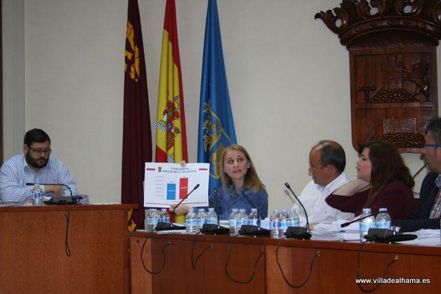Aprobados los Presupuestos Municipales con las enmiendas de IU-Verdes, Foto 1