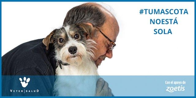 Zoetis respalda el proyecto #TuMascotaNoEstáSola liderado por la red de clínicas veterinarias Vetersalud - 1, Foto 1