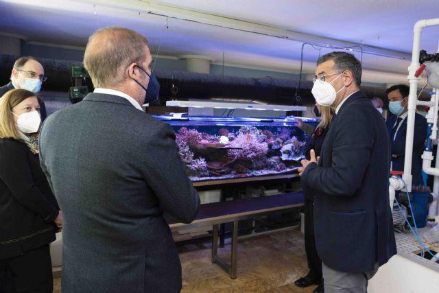 ODSesiones arranca en el Acuario de la UMU su programa para concienciar sobre la conservación de los océanos - 2, Foto 2